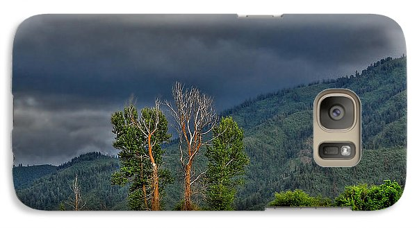 Galaxy Case featuring the photograph Petes Trees by Sam Rosen