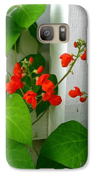 Galaxy Case featuring the photograph Picket Fence Runner Beans by Margaret Newcomb