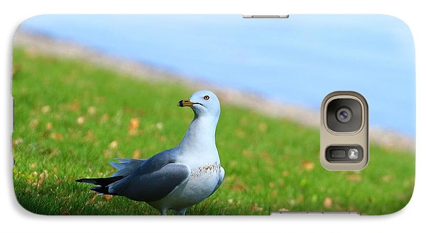 Galaxy Case featuring the photograph Seagull At The Park by Lynn Hopwood