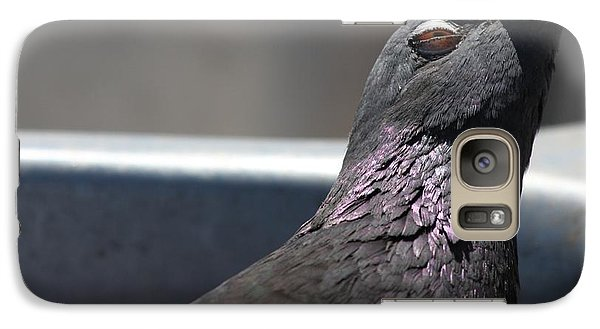 Pigeon In Ecstasy  Galaxy S7 Case by Nathan Rupert
