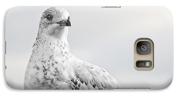 Galaxy Case featuring the photograph Pigeon Pride II by Nicola Nobile