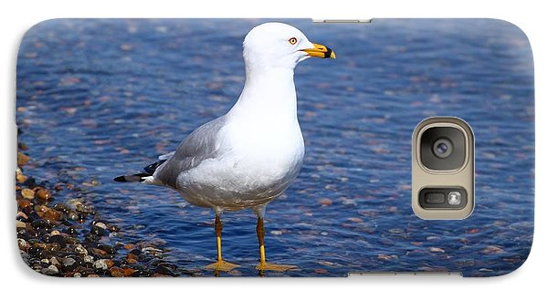 Galaxy Case featuring the photograph Seagull Wading  by Lynn Hopwood
