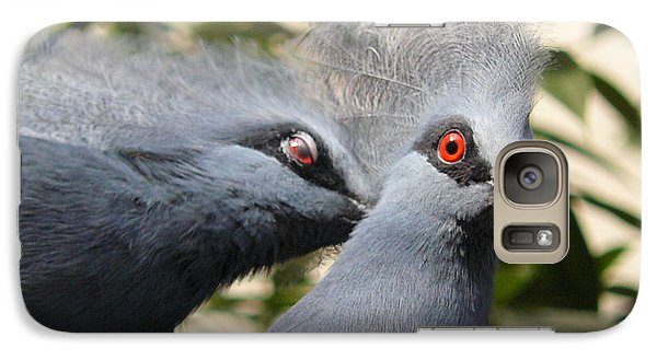 Galaxy Case featuring the photograph Pigeons by Jane Ford