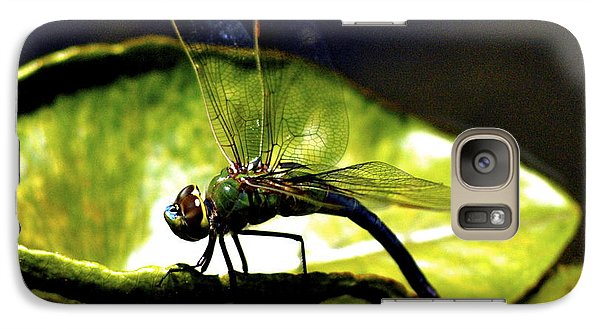 Galaxy Case featuring the photograph Pinao The Hawaiian Dragonfly by Lehua Pekelo-Stearns
