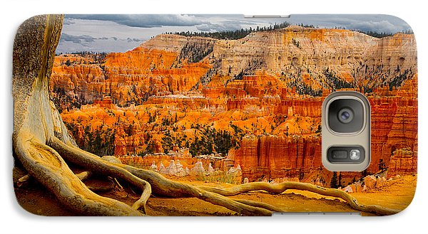Galaxy Case featuring the photograph Pine At Bryce by Jim Snyder