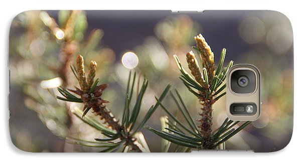 Galaxy Case featuring the photograph Pine by David S Reynolds