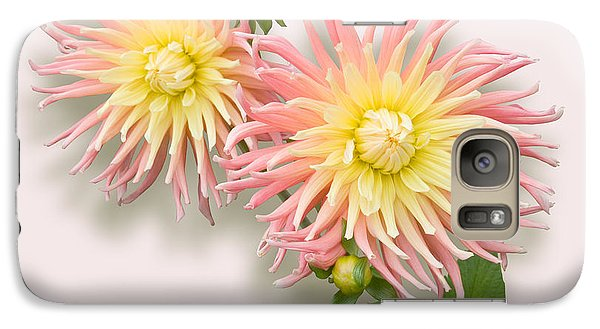 Galaxy Case featuring the photograph Pink And Cream Cactus Dahlia by Jane McIlroy