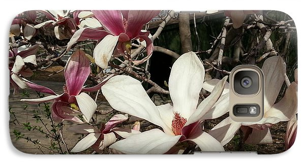 Galaxy Case featuring the photograph Pink And White Spring Magnolia by Caryl J Bohn