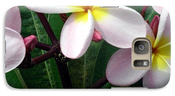 Galaxy Case featuring the photograph Pink And Yellow Plumeria by Karen Nicholson