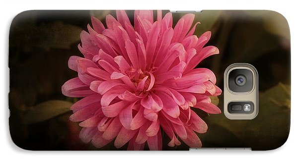 Galaxy Case featuring the photograph Pink Aster by Marjorie Imbeau