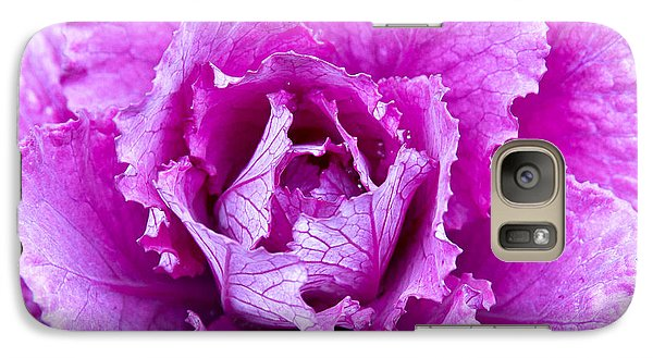 Galaxy Case featuring the photograph Pink Cabbage by Crystal Hoeveler
