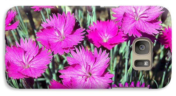 Galaxy Case featuring the photograph Pink Daisies by Gena Weiser