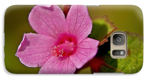 Galaxy Case featuring the photograph Pink Flower by Olga Hamilton