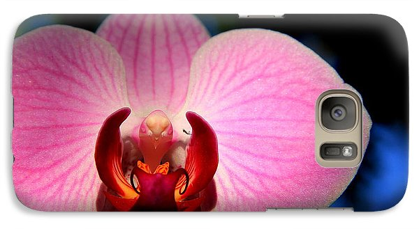 Galaxy Case featuring the photograph Pink House by Greg Allore
