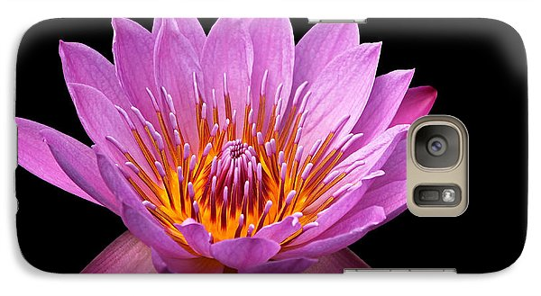 Galaxy Case featuring the photograph Pink Lady On Black by Judy Vincent