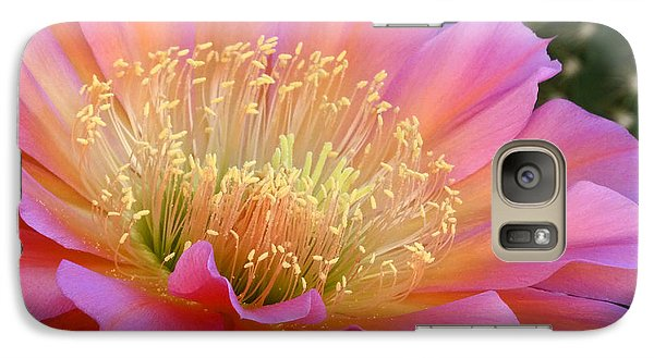 Galaxy Case featuring the photograph Pink Melody by Cindy McDaniel