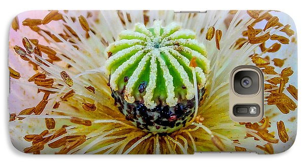 Galaxy Case featuring the photograph Pink Poppy Squared by TK Goforth