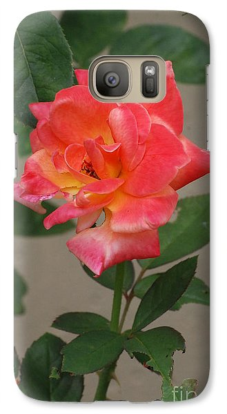 Galaxy Case featuring the photograph Pink Rose by Mark McReynolds
