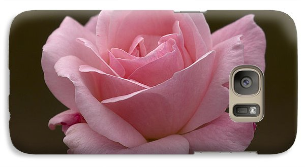Galaxy Case featuring the photograph Pink Rose by Meg Rousher