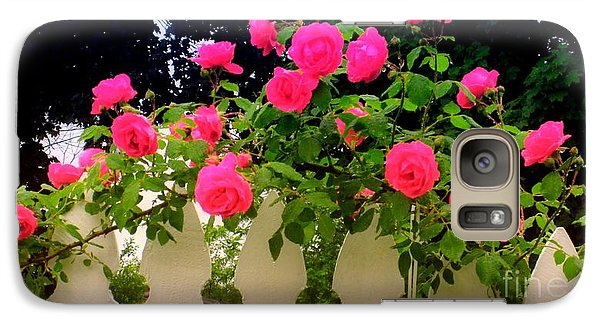 Galaxy Case featuring the photograph Pink Rose Pickets by Margaret Newcomb
