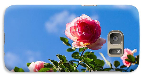 Rose Galaxy S7 Case - Pink Roses - Featured 3 by Alexander Senin