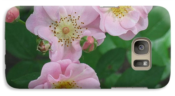 Galaxy Case featuring the photograph Pink Roses by HEVi FineArt