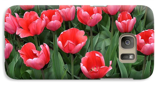 Galaxy Case featuring the photograph Pink Tulips by Diane Lent