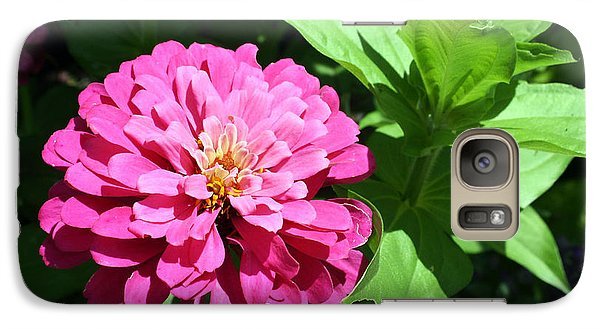 Galaxy Case featuring the photograph Pink Zinnia by Ellen Tully