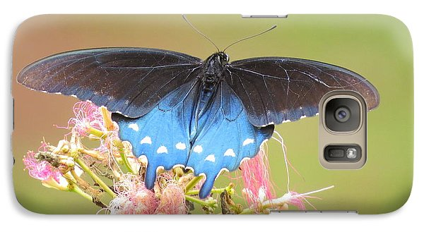Galaxy Case featuring the photograph Pipevine Swallowtail by Phyllis Beiser