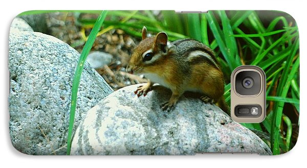 Galaxy Case featuring the photograph Playful Chipmunk by Gary Wonning