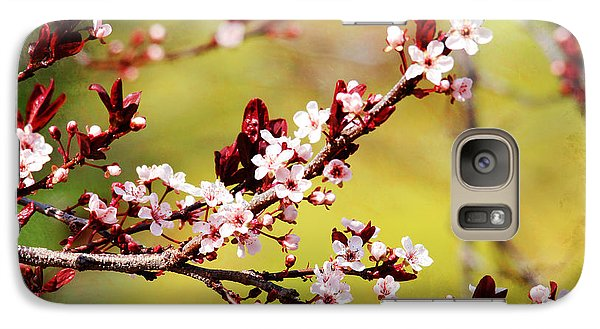Galaxy Case featuring the photograph Plum Blossoms by Trina  Ansel