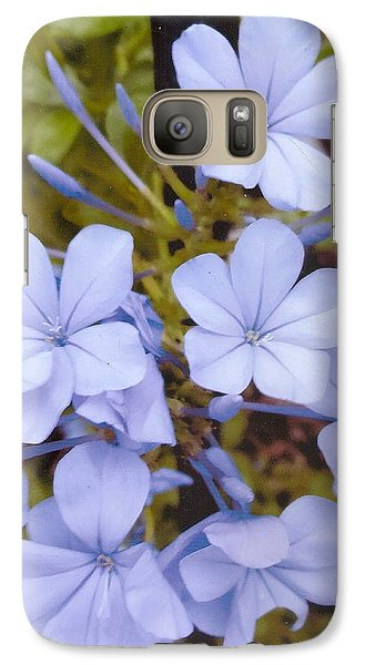 Plumbago Auriculata Or Cape Wort Galaxy S7 Case by Rod Ismay
