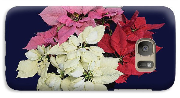 Galaxy Case featuring the photograph Poinsettia Tricolor II by R  Allen Swezey
