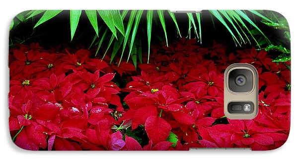 Galaxy Case featuring the photograph Poinsettias And Palm by Tom Brickhouse