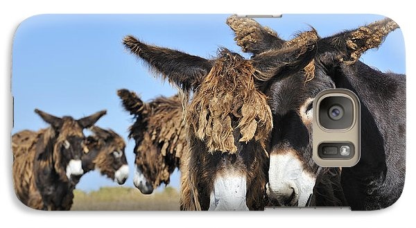 Galaxy Case featuring the photograph Poitou Donkey 3 by Arterra Picture Library