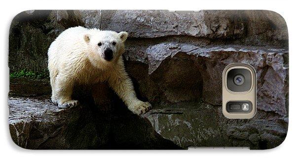 Galaxy Case featuring the photograph Polar Bear Cub by Tom Brickhouse