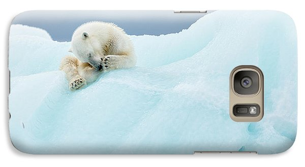 Bear Galaxy S7 Case - Polar Bear Grooming by Joan Gil Raga