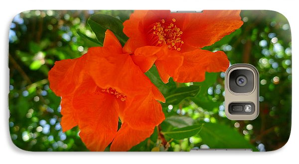Galaxy Case featuring the photograph Pomegranate Blossom  by Nora Boghossian