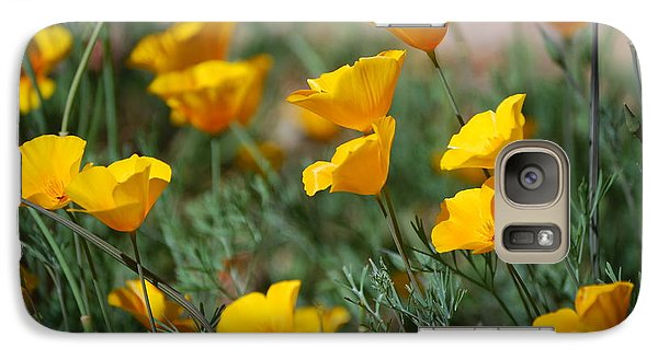 Galaxy Case featuring the photograph Poppies by Tam Ryan