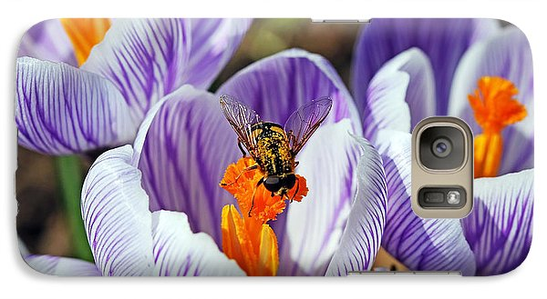 Galaxy Case featuring the photograph Popping Spring Crocus by Debbie Oppermann