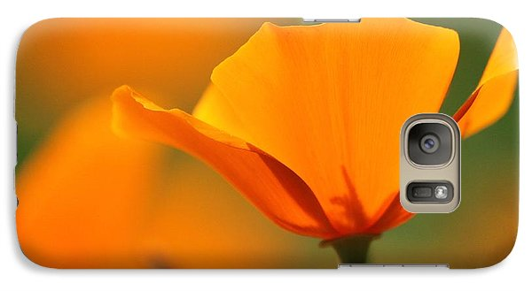 Galaxy Case featuring the photograph Poppy Bliss  by Amy Gallagher