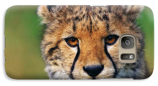 Galaxy Case featuring the photograph Portrait Of A Cheetah Cub by Nick  Biemans