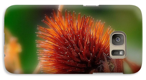 Galaxy Case featuring the photograph Portrait Of A Cone Flower by Karen Kersey