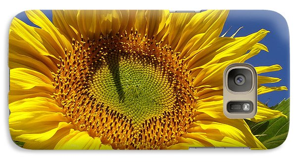 Galaxy Case featuring the photograph Portrait Of A Sunflower by Diane Miller