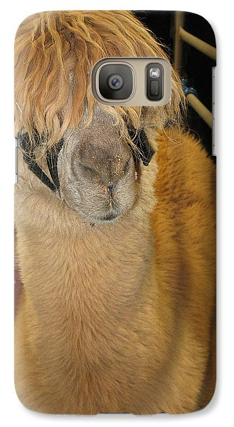 Galaxy Case featuring the photograph Portrait Of An Alpaca by Connie Fox