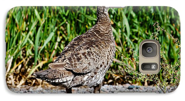 Galaxy Case featuring the photograph Prairie Chicken Run by Janice Rae Pariza