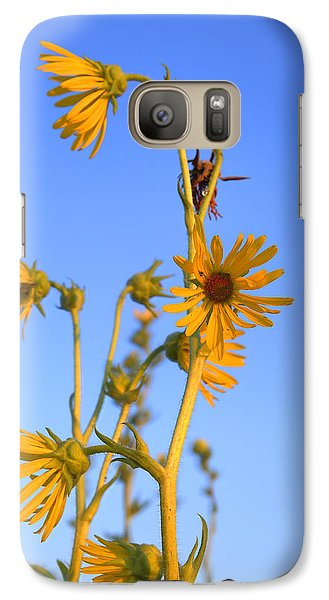 Galaxy Case featuring the photograph Prairie Compass Plant by Ed Cilley
