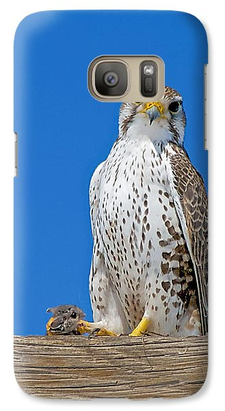 Galaxy Case featuring the photograph Prairie Falcon With Mouse by Stephen  Johnson