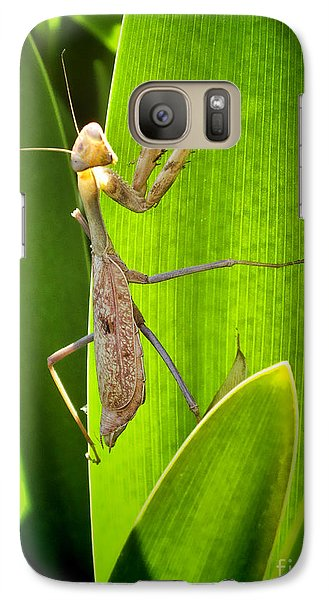 Galaxy Case featuring the photograph Praying Mantis by Kasia Bitner