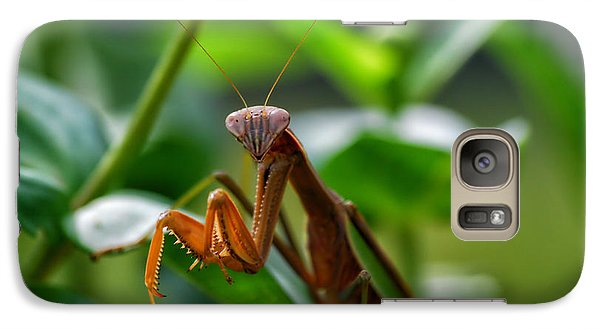 Galaxy Case featuring the photograph Praying Mantis by Thomas Woolworth